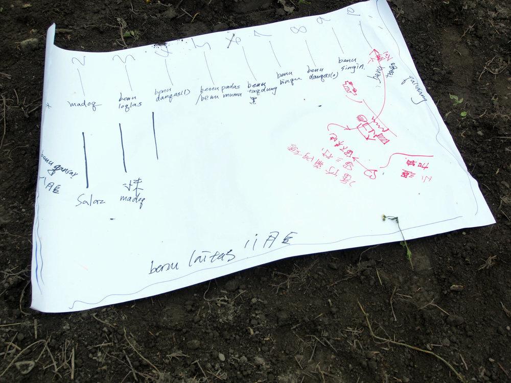 田區規劃圖