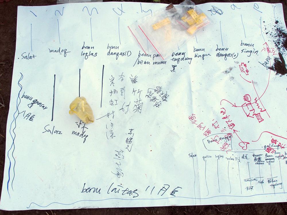 大家在田區規劃圖上,簽下了名字。    右下角則是記錄了當天的實際栽種配置。