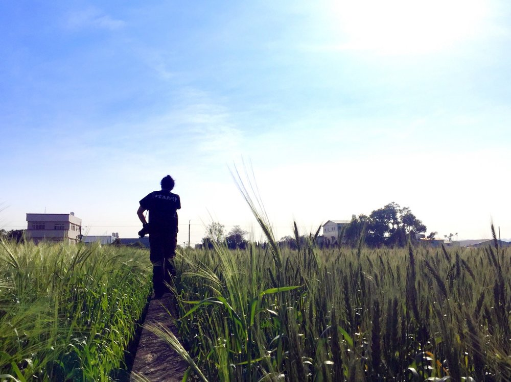 小年夜當天巡田,阿凱穿的 t-shirt 上是賴和的詩句「勇士當為義鬥爭」。若是再早個幾年,對台灣農業議題還不是那麼熟悉時,看著這些麥田可能還會有些浪漫想像,但後來巡田腦中跑出的念頭總是「農地這麼破碎到底是該怎麼辦?」