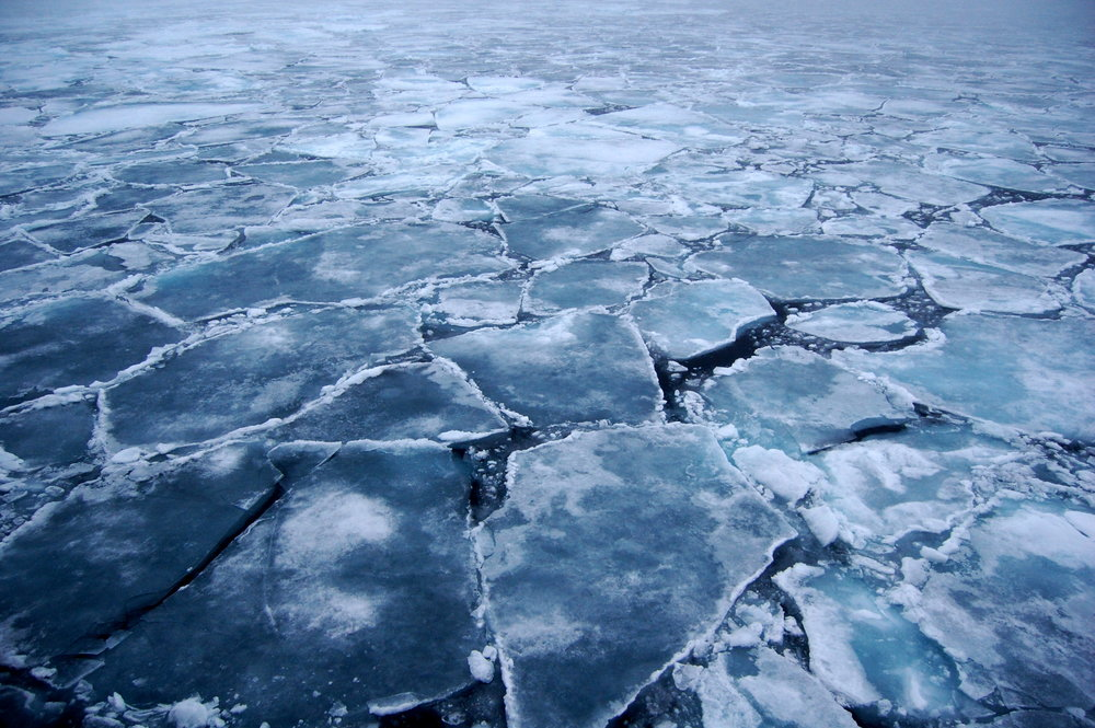 Arctic: Journalism - 2017