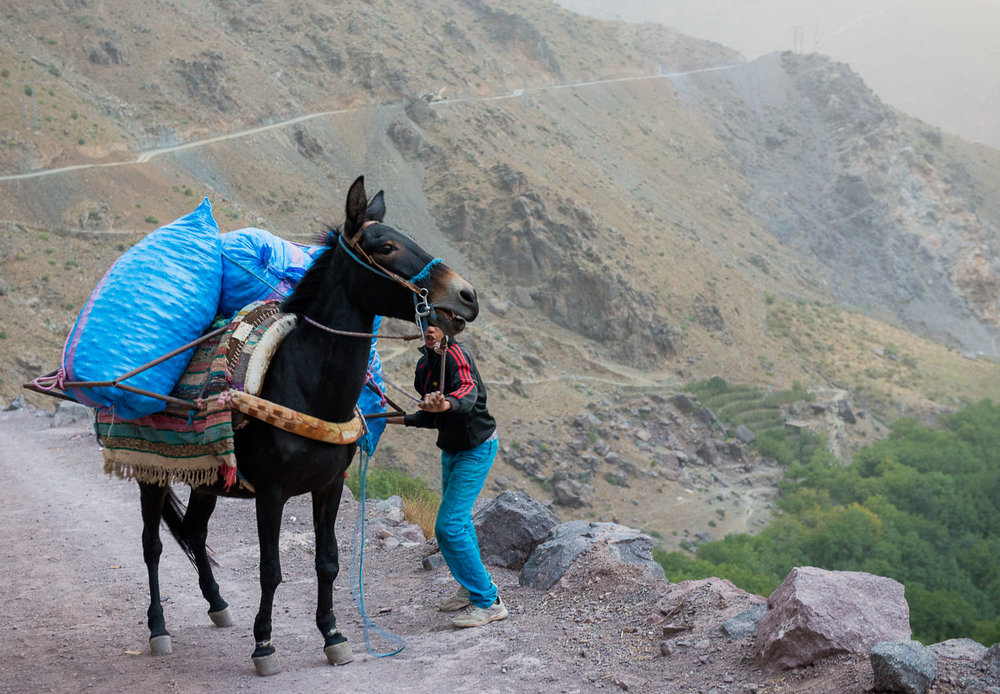 Morocco Imlil Toubkal 6.jpg
