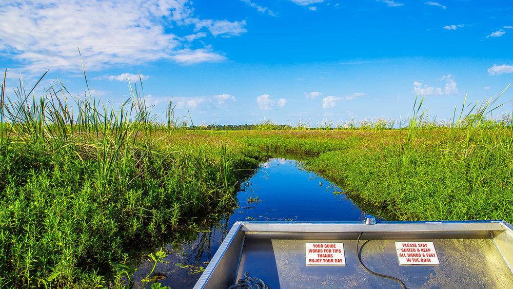 Florida Spectacular