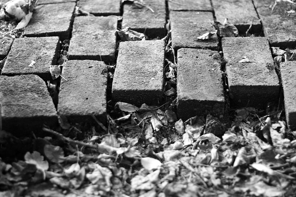 Black and white photo of a brick pathway coming to an abrupt end.