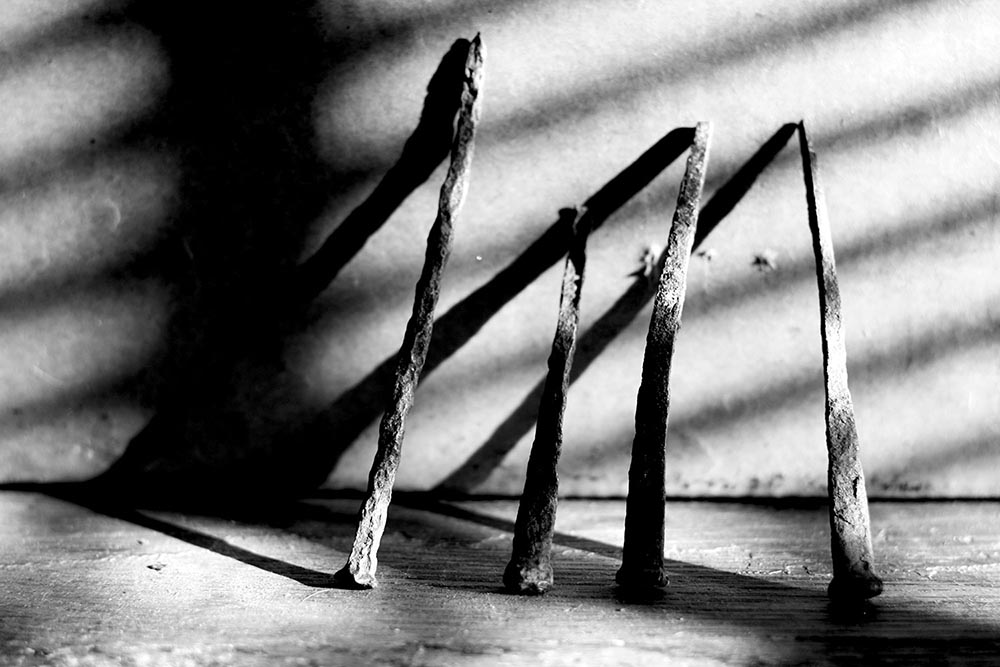Black and white photograph of four rusty iron nails casting long shadows.