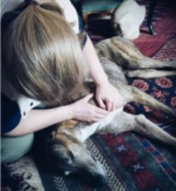 Link getting his regular dog massage!