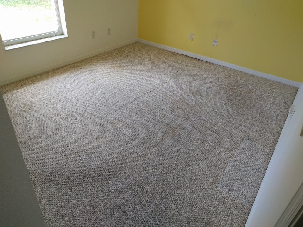New home purchase - Customer just bought house and with a toddler was concerned about carpets and sanitization.