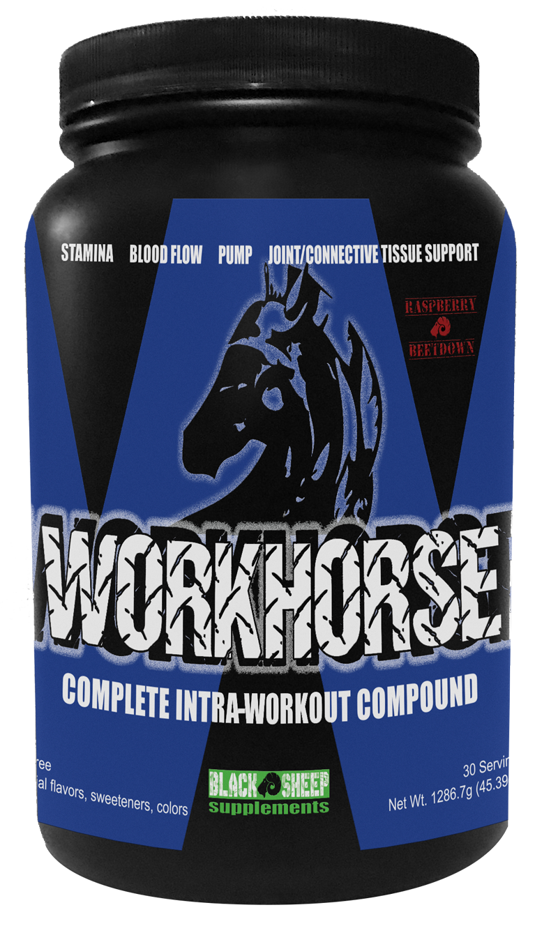 WORKHORSEIntra-Workout -