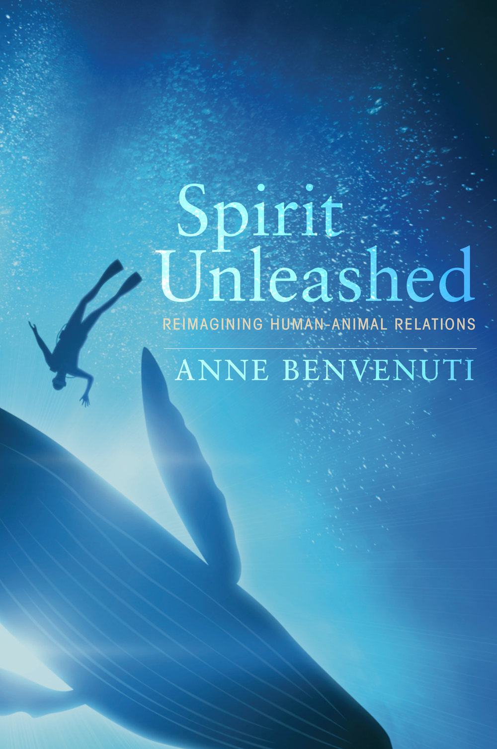 Spirit Unleashed cover.jpg