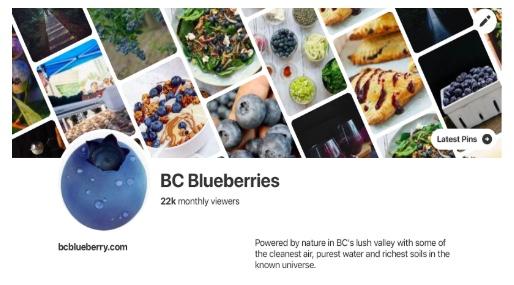 BC Blueberries Pinterest Social T.jpg