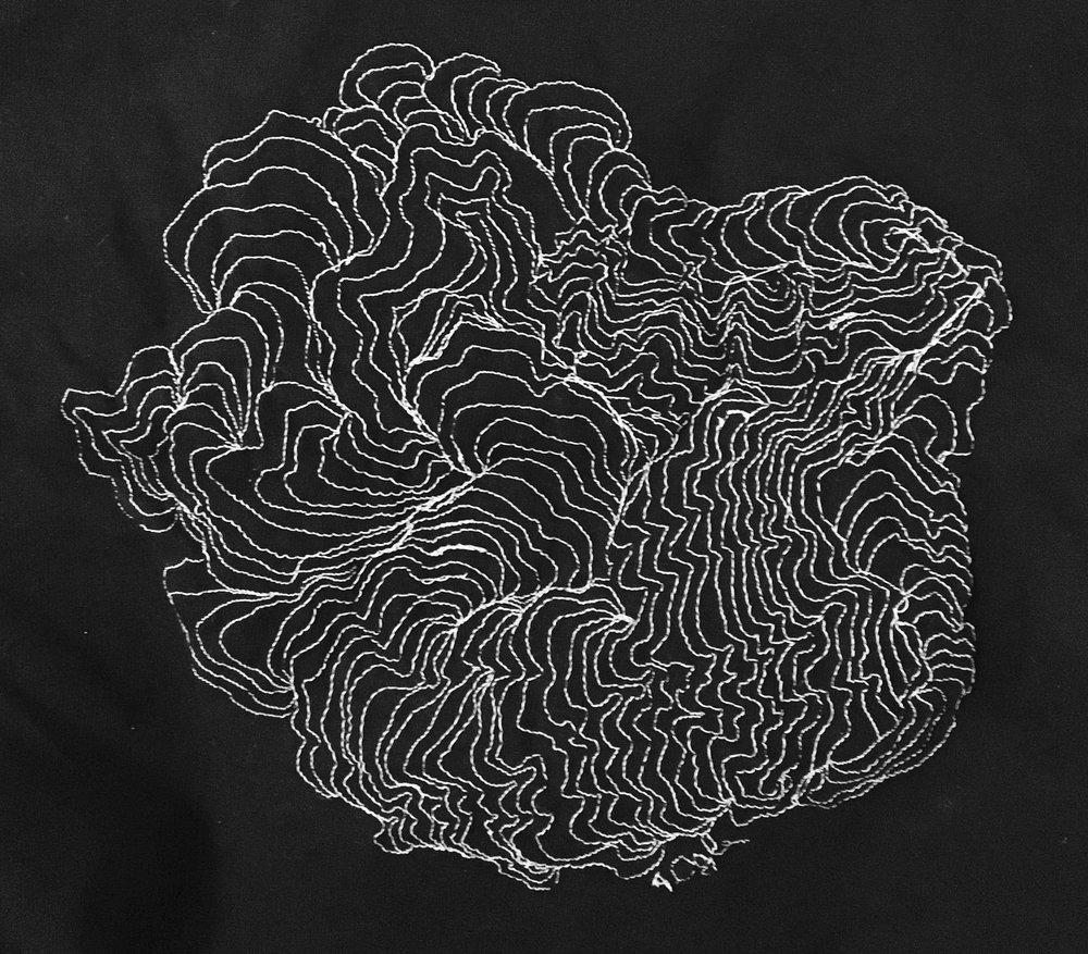 Monochromatic Machine Embroidery, 2017