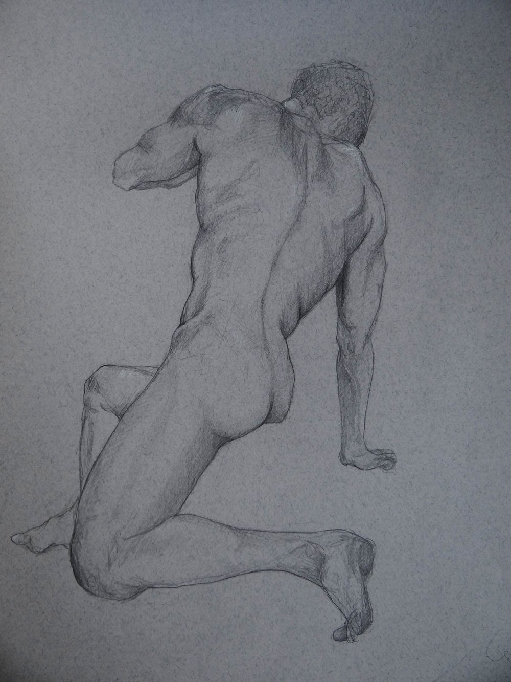 "2hr Figure Drawing of Male Back, Pencil on Paper, 50x65"", 2016"