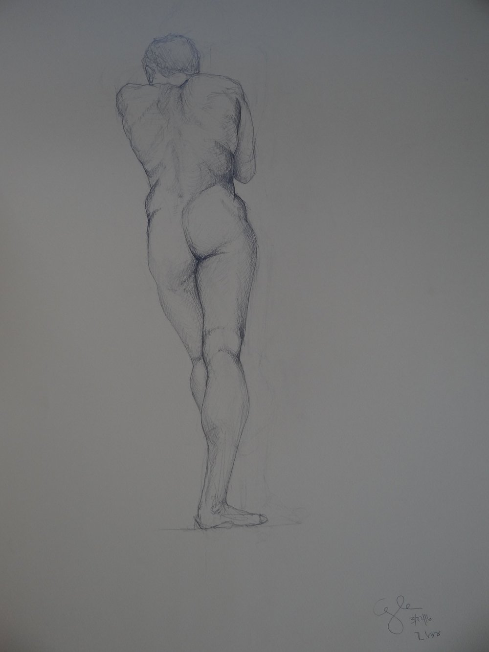 "1.5hr Figure Drawing of Male Back Lean, Pencil on Paper, 50x65"", 2016"