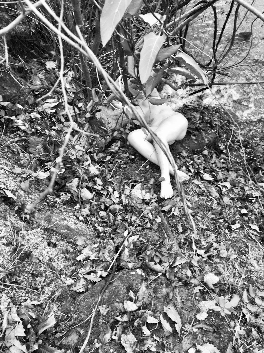 Bodies in the Landscape , December 2018
