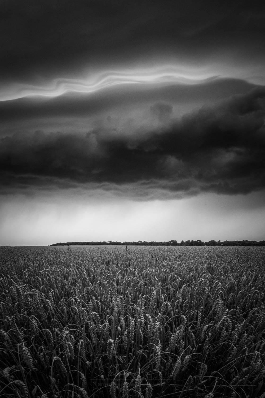 Black and White_IMG_0984.jpg