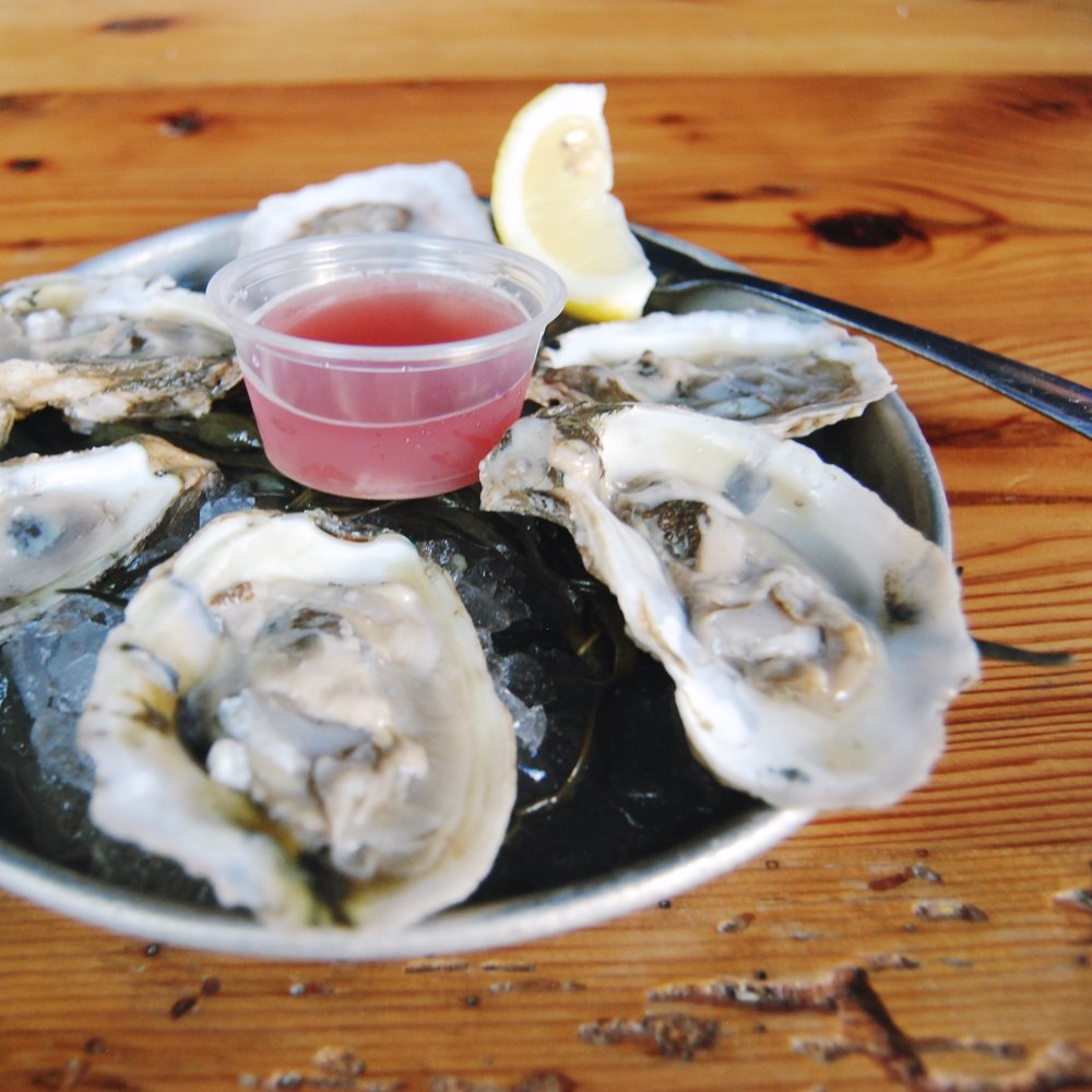 scales-and-shells-oysters.JPG