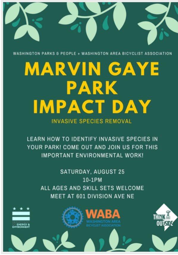 Marvin Gay Park Impact Day.jpg