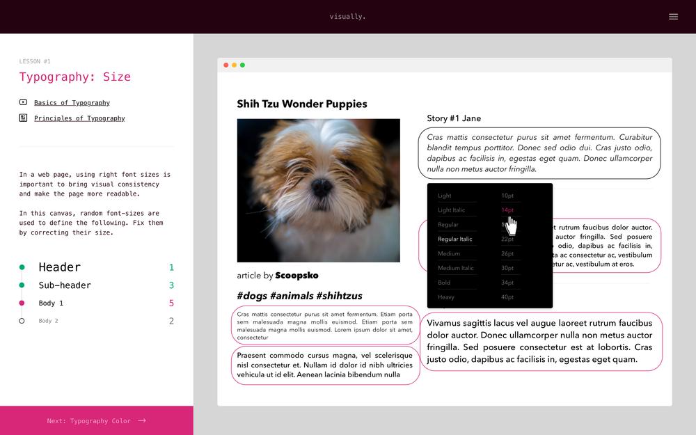 Visually - Learn Fundamentals of Visual Design (Concept + UX Design)
