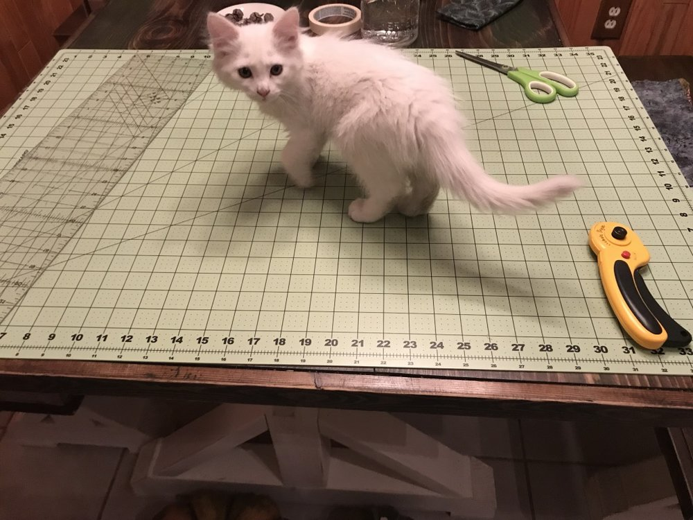 Quilter's ruler, cutting mat, and rotary cutter make it easy to cut perfect squares…kitten not so much