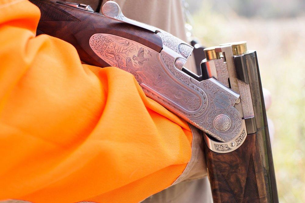 Bobwhite Quail Hunting -