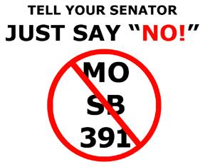 No-SB-391-sm.png