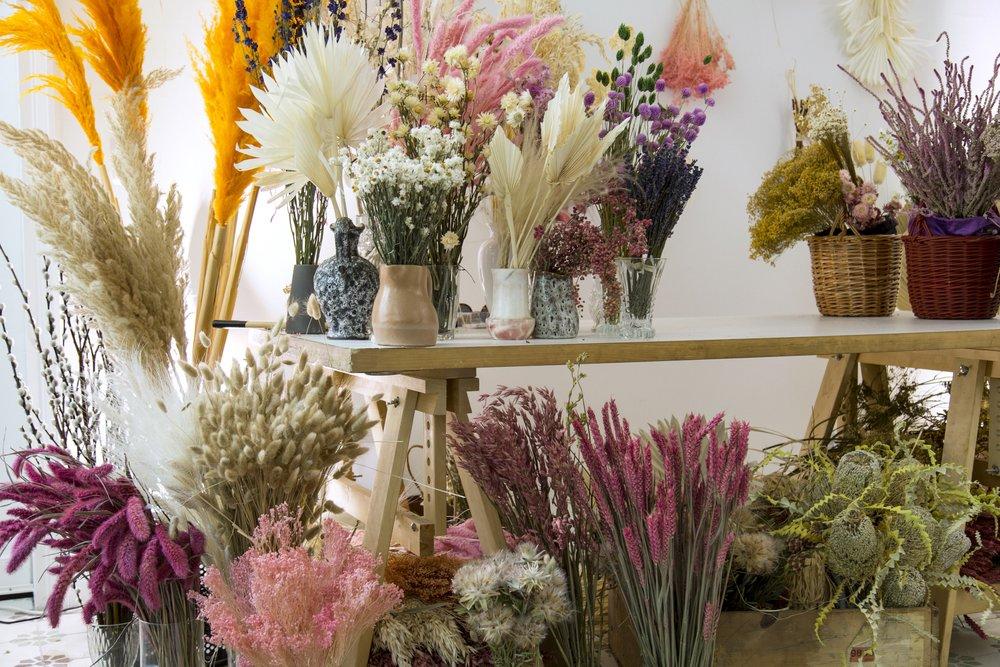 atelier-prairies-fleurs-sechees