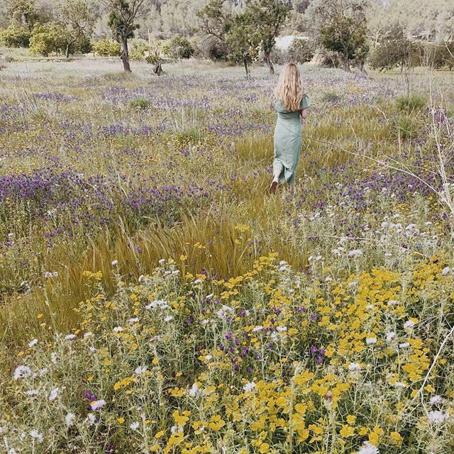 Florist paradise 🍃🌸🙌🏻 . . . . . . #ibiza #ibizanature #naturelovers #outdoorlife #reallife #flowers #countryside #ibizacountryside #naturephotography #flowersfields #instatravel #spring #springflowers #vsconature #ibiza #ibizasecrets #flowerstagram