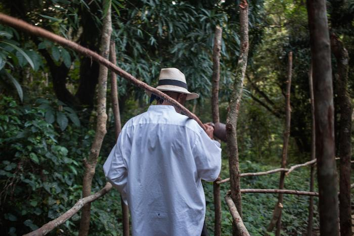 Procession Migracion 9 via Creators Project.jpg