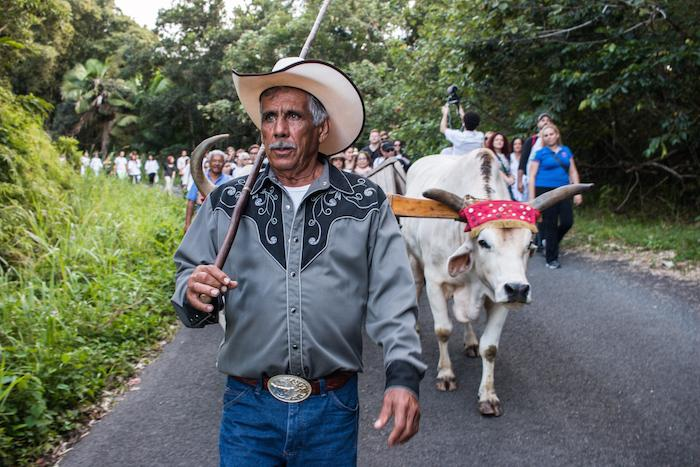 Processino Migracion 2 via Creators Project.jpg