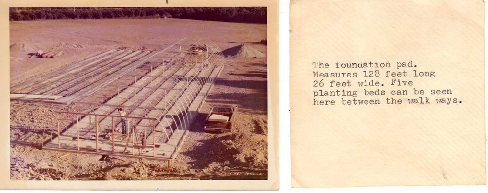 Original photo and notes from Beylik Family scrapbook showing the foundation pad. In the photo is Bob Beylik. As the description says, the foundation pad measures 128 feet long by 26 feet wide. The greenhouse was designed to hold 5 planing beds.