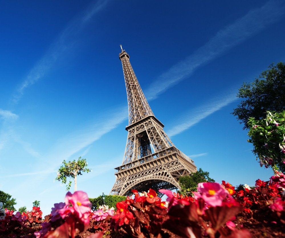 Lovely-Paris-Wallpaper-Flowers-Image-Garden-Picture.jpg