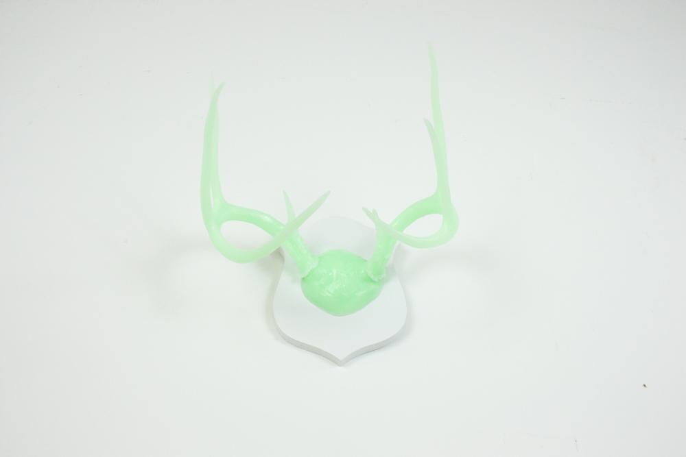 antlers-9335.jpg