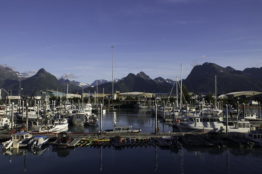 The small boat harbor in Valdez