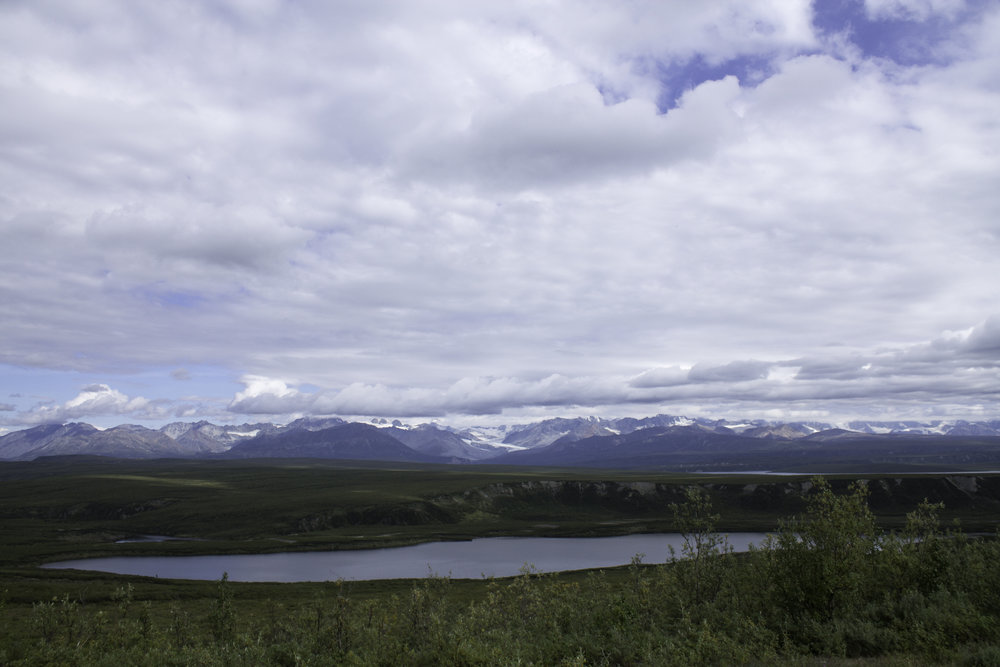 Gulkana Glacier in the distance