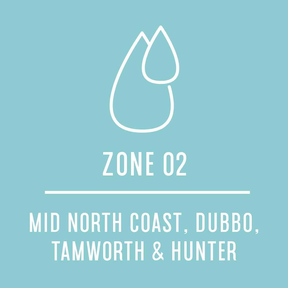 Zone2.jpg