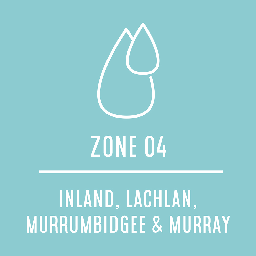 Zone4.jpg
