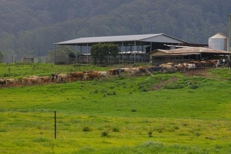 The Australian Dairy Farmer, September 2 2015