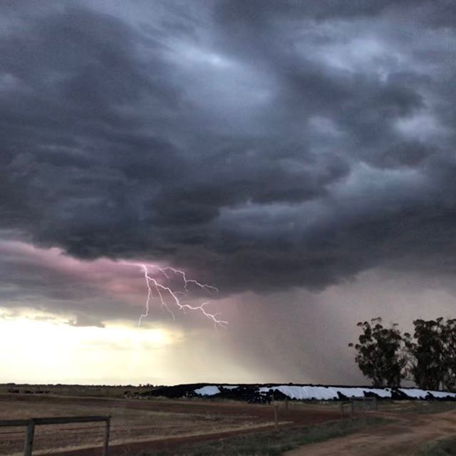 "From @dairyconnect member & director Ruth Kydd at Finley - ""Another thunderstorm rolling past. Dust storms, lots of wind and only a few drops of rain."" #dairy #thunderstorm"