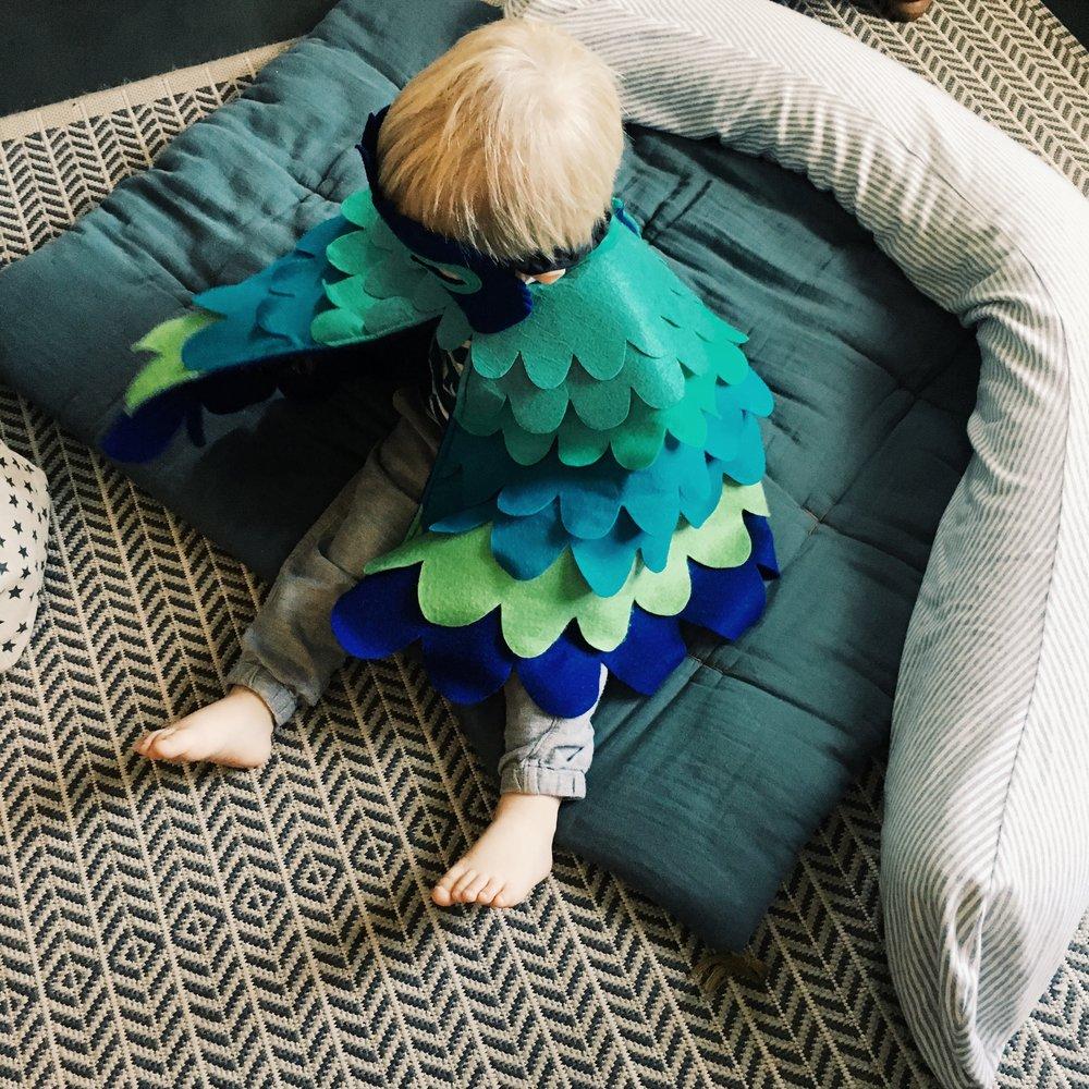 bird costume.jpg