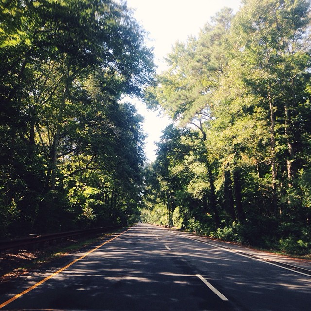 wf_road.jpg