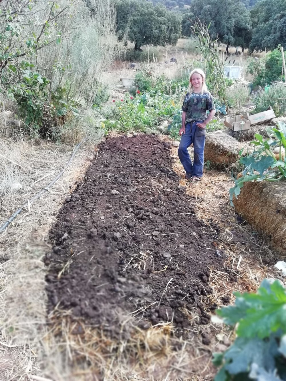 Step 2: A thin substrate of mature compost or good soil is placed on top, into which seeds or seedlings are placed