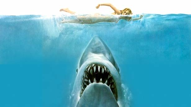The iconic cover image of Peter Benchley's novel  Jaws , published in 1974. The book and movie had a long-lasting impact on public perception of sharks, particularly the great white.