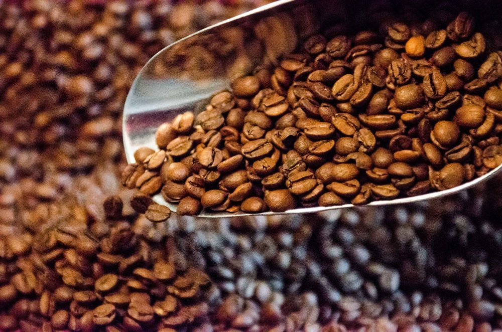 Origo Source society  - We sourced our single-origin coffee with you in mind. If you're really enjoying the product, add a monthly subscription to ensure you always have your favorite coffee. We've added this option  to allow you to have a fresh bag of Origo Coffee delivered to you every month.             - Good Should Always Taste This Good-