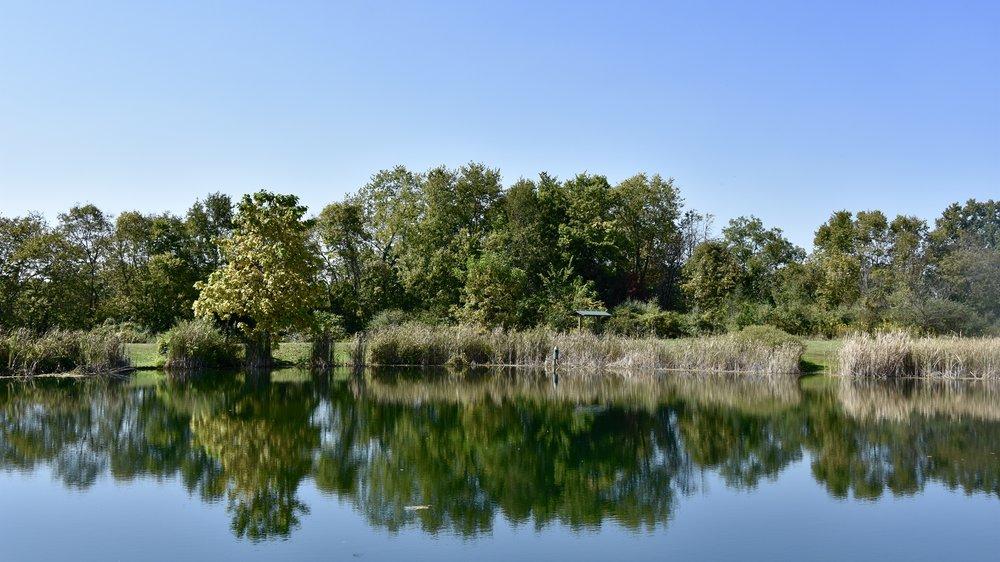 Overlook Pond atStillwater Prairie Reserve (23 Sep 2017)