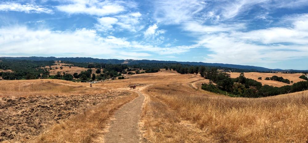 The Pearson-Arastradero Preserve in Palo Alto, CA.© 2017 Copyright All rights reserved - TheHikingCompanion.com