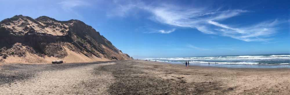 The dog-friendly, dog-filled beach at Fort Funston in San Francisco, CA.© 2017 Copyright All rights reserved - TheHikingCompanion.com