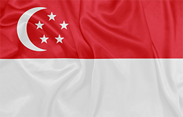 singapore-flag-small.png