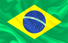 brazil-flag-small.png