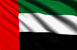 united-arab-emirates-flag-small.png