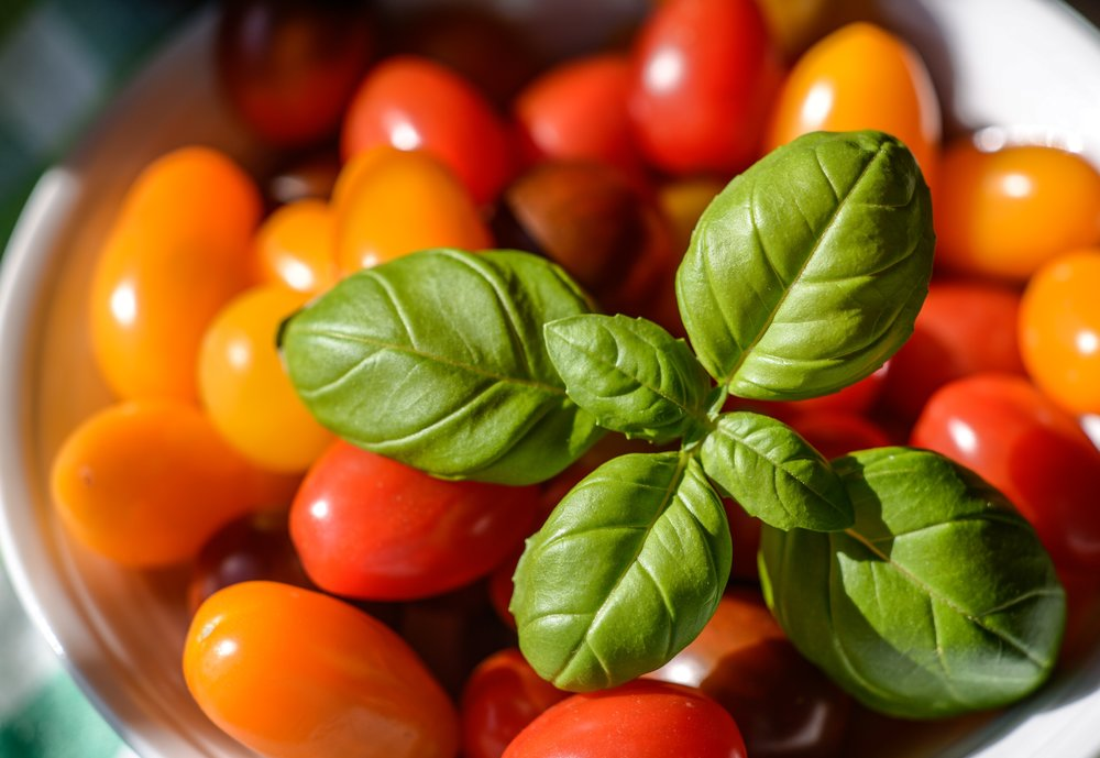 basil-bowl-bright-1087894.jpg