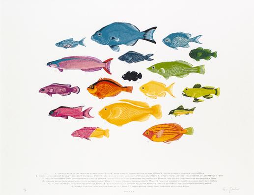 Spectrum Fish